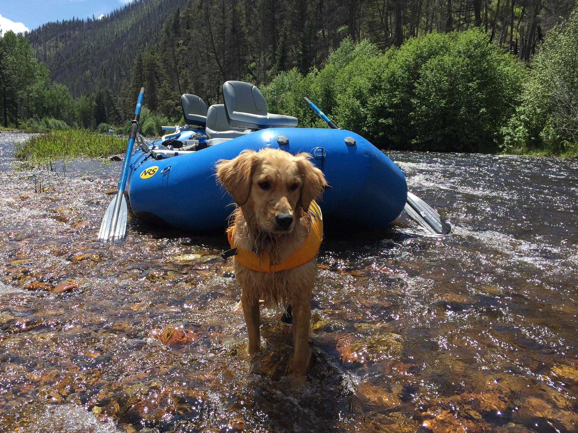 Hurley & Raft